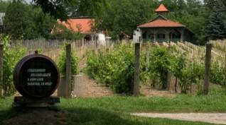 Páros Borkóstoló, pincetúra és lovaskocsikázás a Monori Pincefaluban