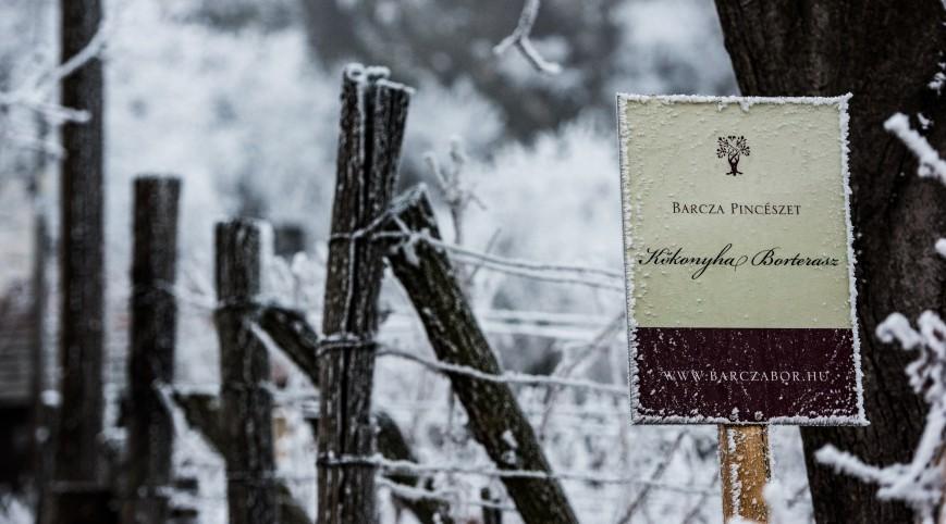 Somló hegyi borkóstolás 3 fő részére a Barcza Pincészetben