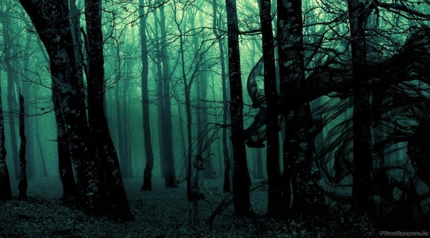 Láthatatlan Erdő-szabadulós játék 2 fő