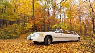 Utazás egy hófehér amerikai limuzinnal 1 óra