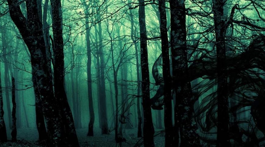 Láthatatlan Erdő-szabadulós játék 6 fő