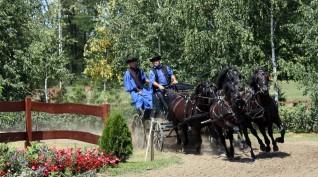 Lovasbemutató a Lázár lovasparkban magyaros ételekkel 4 fő